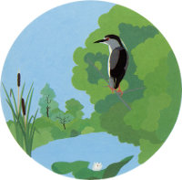 Gruppo Ecologico Tiveron